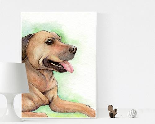 Pet illustration gift